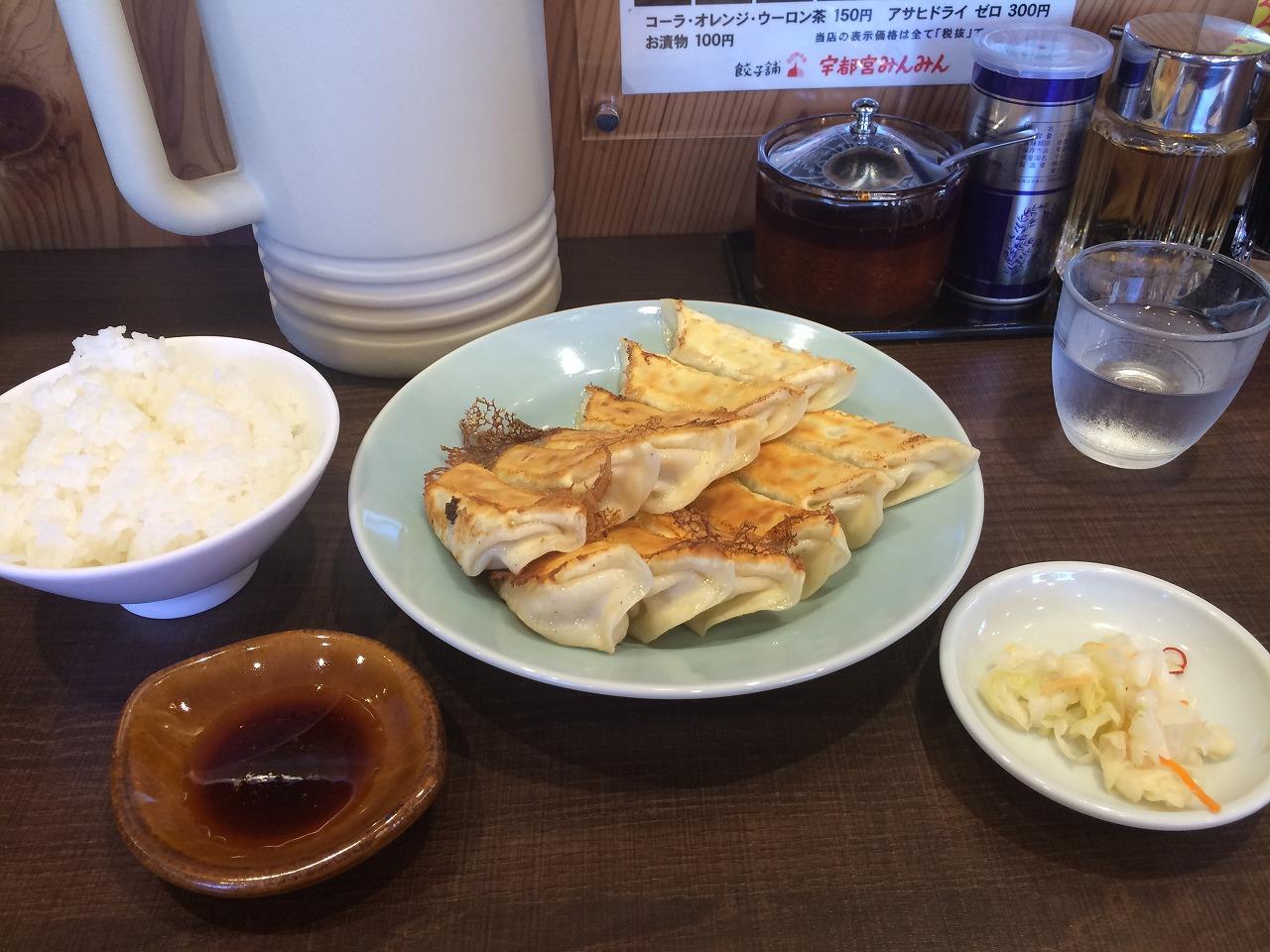焼き餃子2人前+ライス