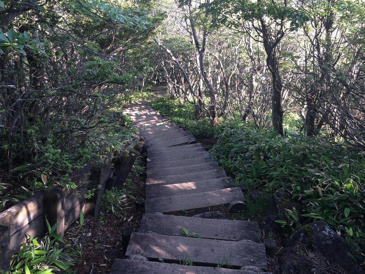 くだりの階段。