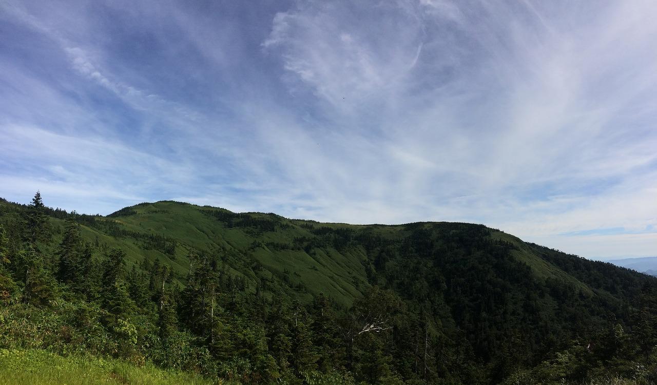左上が山頂です。