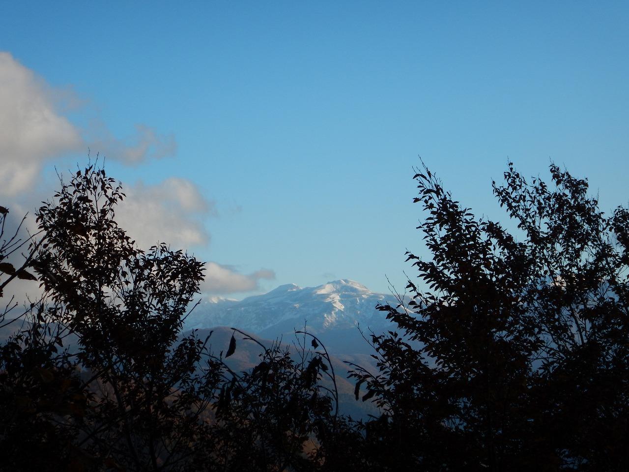 木々の間から覗く白山