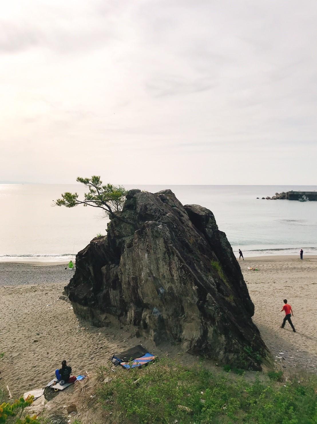 春野漁港の岩