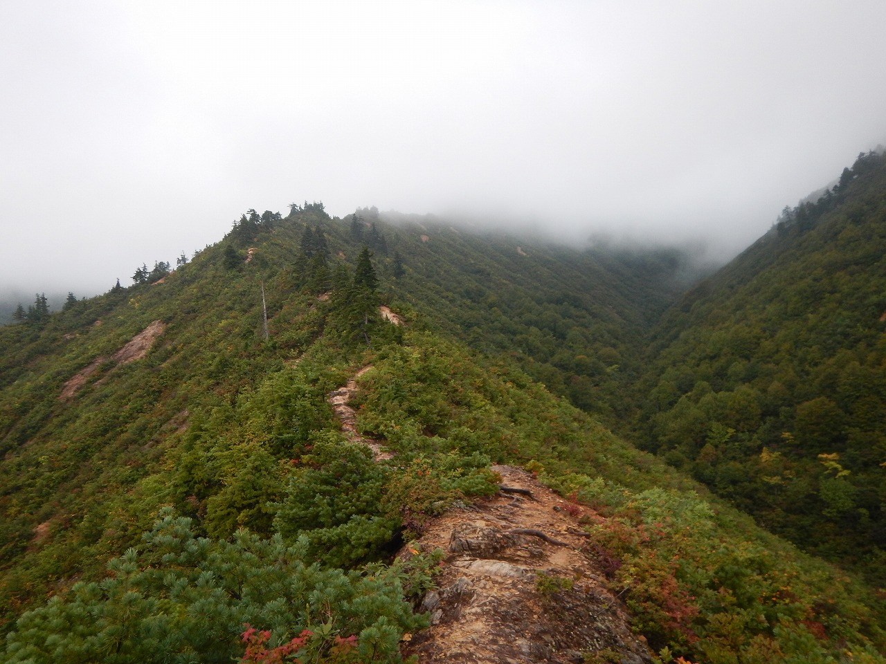 曇天の登山道