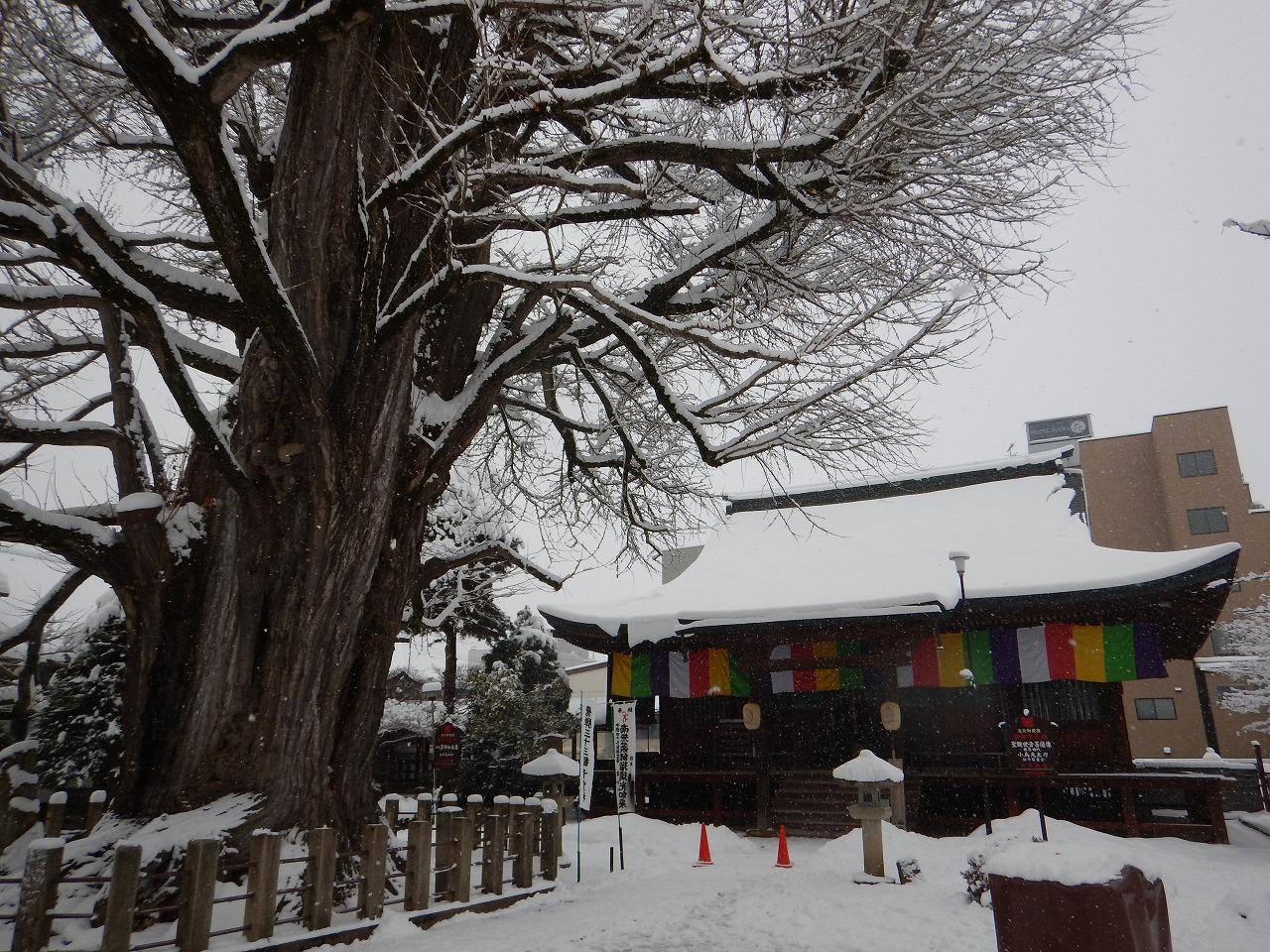 THE白い神社